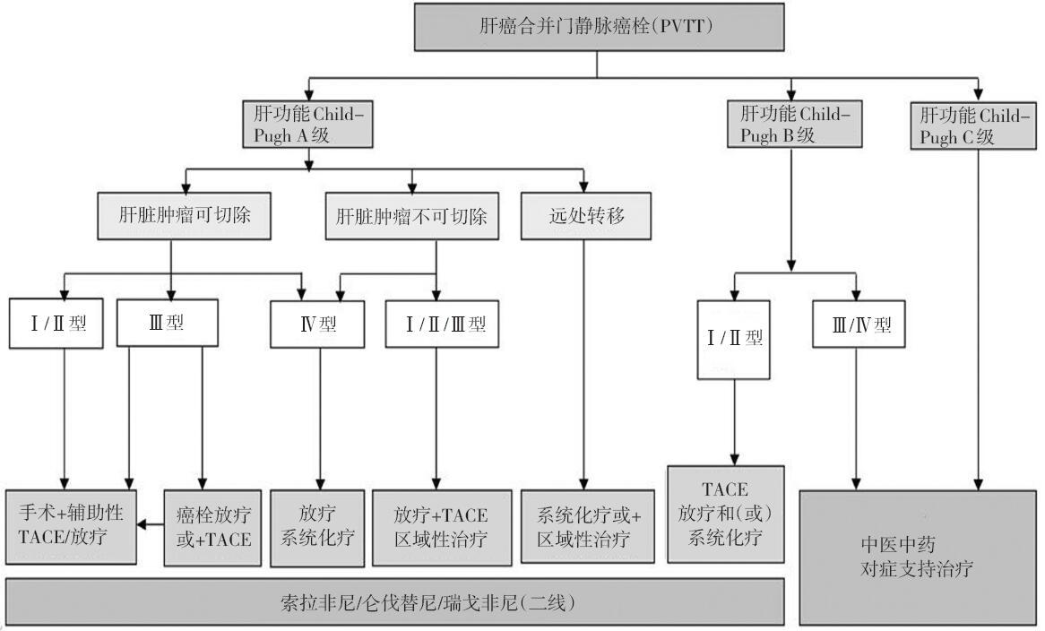 治療 肝 細胞 癌